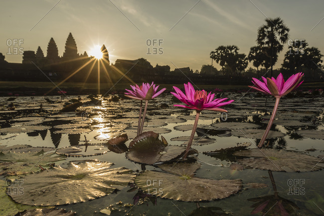 Daybreak over the west entrance to Angkor Wat, in Cambodia