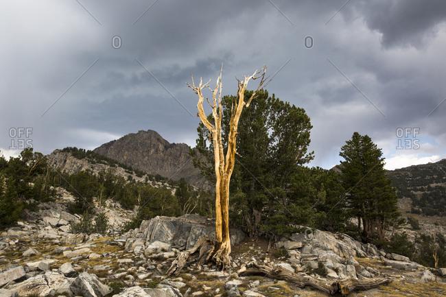 The Eastern Sierra mountain range in California