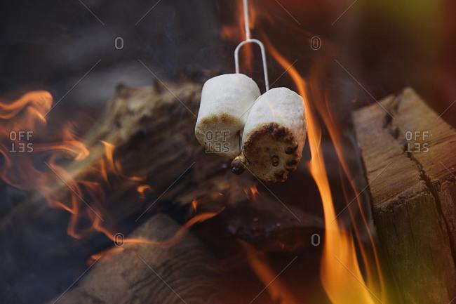 Marshmallows cook over a campfire