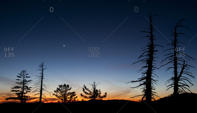 Sunset and crescent moon in Donner Pass, Sierra Nevada