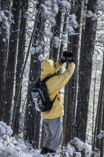 A hiker waving his hands in Serbian forest