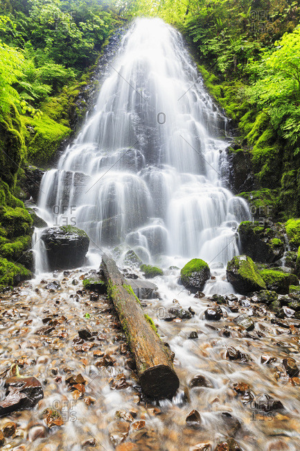 Fairy Falls, Columbia River Gorge, Multnomah County, Oregon