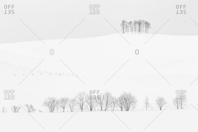 Remote Japanese hillside in winter