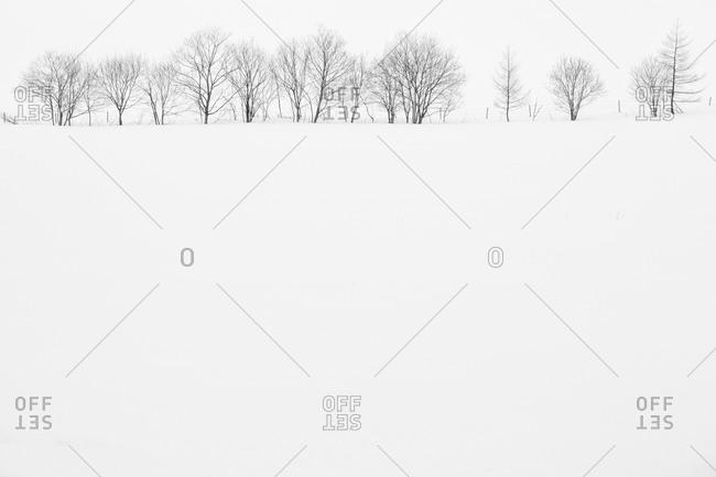 Isolated Japanese hillside in winter