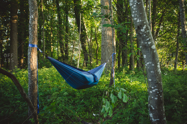 Person in hammock in German forest