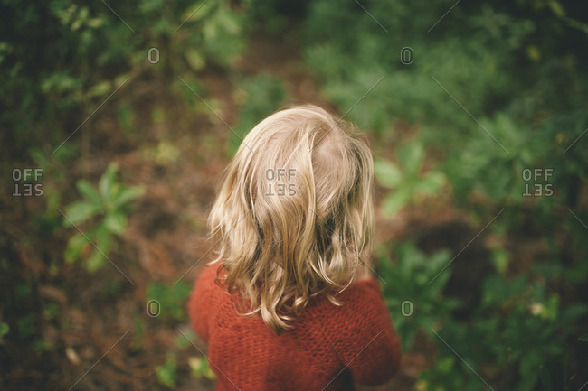 Back view of young blond child exploring a wooded area