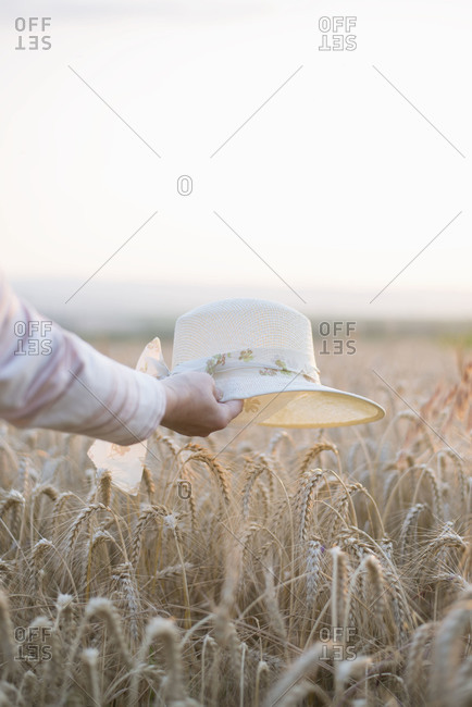 Woman holding a hat over ripe wheat