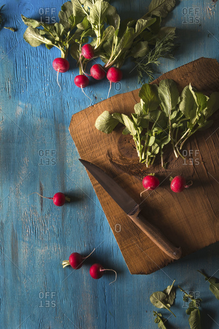 Ripe radishes on a cutting board