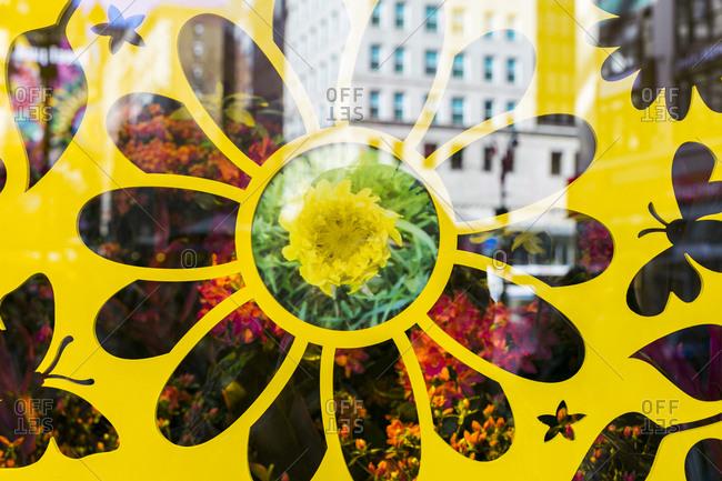 NY, NY, USA - April 4, 2015: Yellow flower window display in New York City, NY, USA