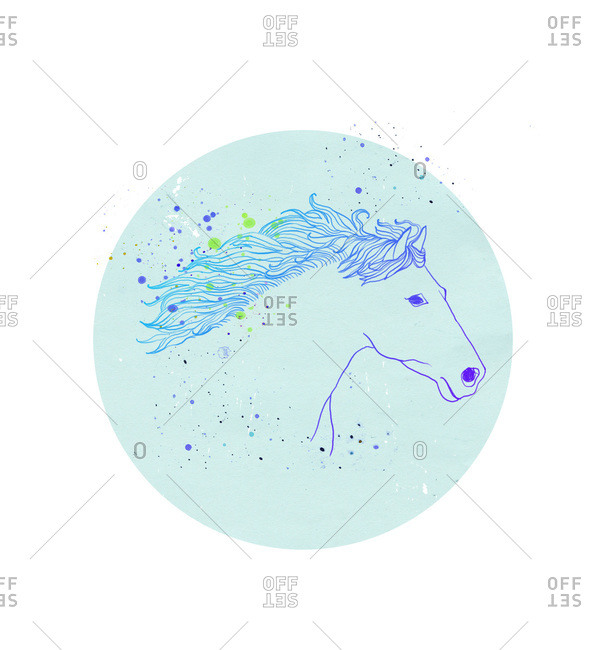 An illustration of a horse