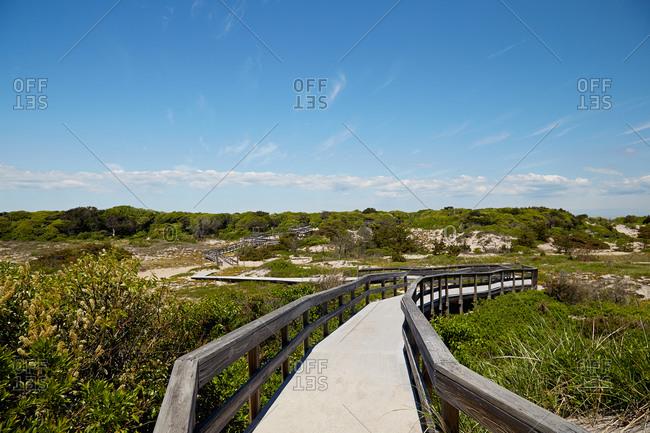 Walkway along coastal vegetation