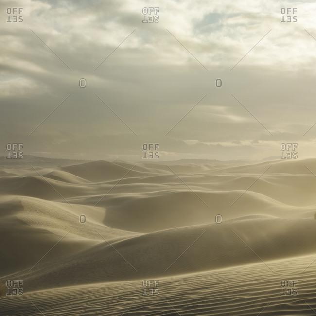 Desert landscape, Little Sahara, Utah
