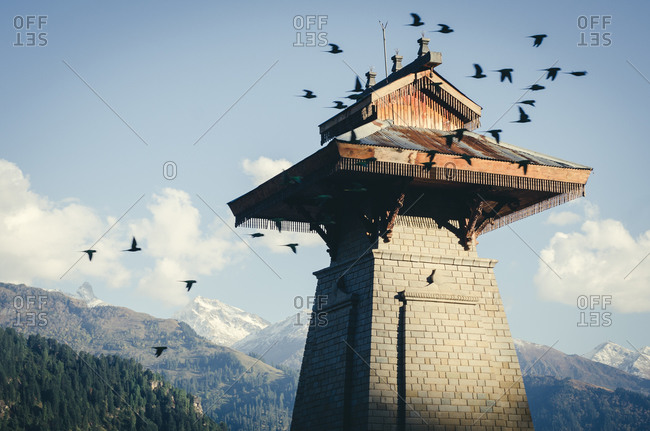 Birds flying above a tower in Manali, Himachal Pradesh, India