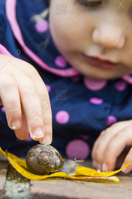 Close-up of toddler girl in rain jacket watching snail cross yellow leaf