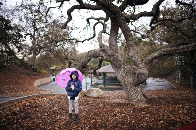 Child with umbrella stands next to a gnarled tree in park