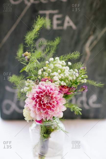 Bouquet of a pink dahlia in a jar
