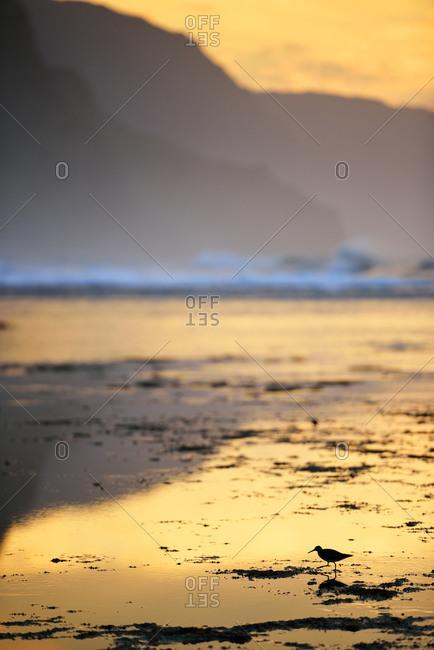 Sunset at Kee Beach, Hanalei, Hawaii