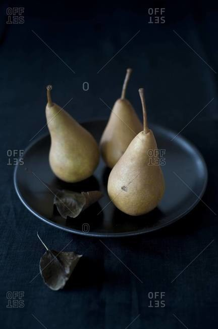 Still life of bosc pears on a black dish with leaves