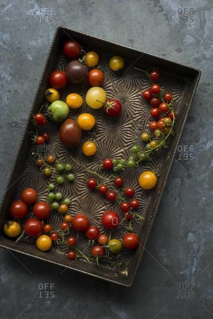 Overhead view of assorted small tomatoes on a metal tray