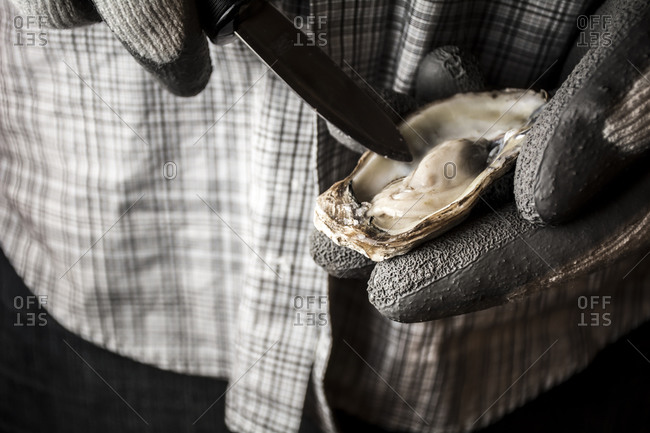 Close up of person shucking an oyster