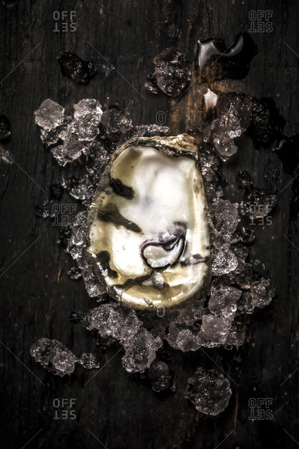 Oysters half on crushed ice