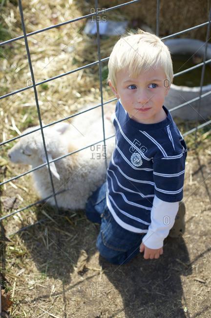 Little boy kneeling by a lamb