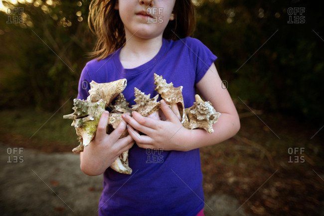 A little girl holds a collection of conch shells