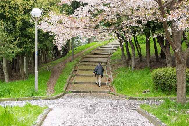 An old man walks up a hill in Chishima Province in Japan