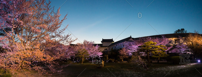 Hyougoken, Japan - April 11, 2015: A garden filled with cherry blossom trees outside of the Himeji castle in Hyougoken, Japan