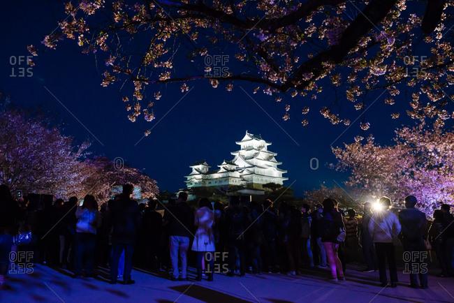 Hyougoken, Japan - April 11, 2015: Himeji castle at night in Hyoukoken, Japan