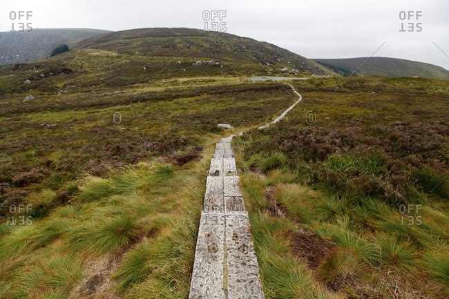 Path in County Wicklow, Ireland