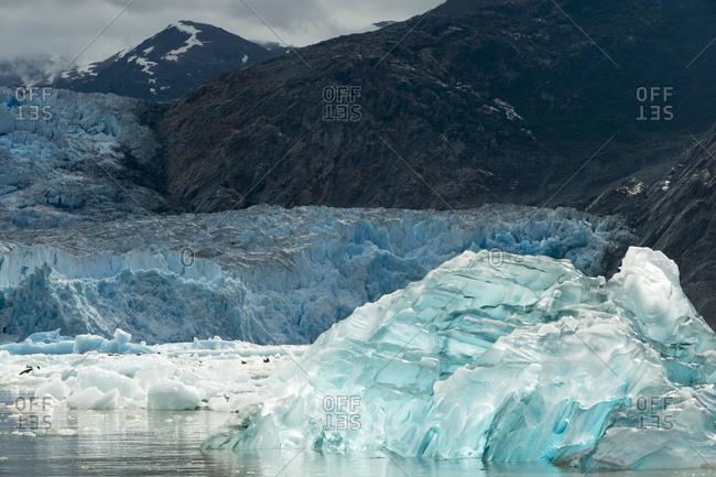 Blue iceberg at Tracy Arm fjord near the Sawyer Glacier, Alaska
