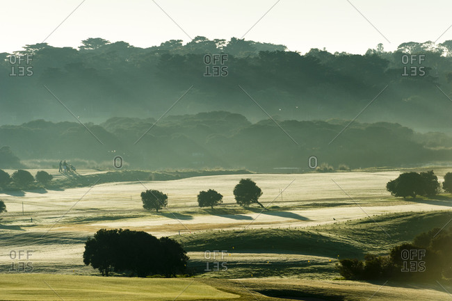 Morning mist over the fairways and putting greens of a golf course