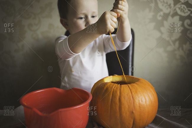 Young boy pulling the insides out of a pumpkin