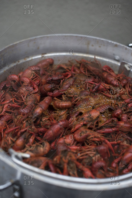 Cooked crayfish in a pot