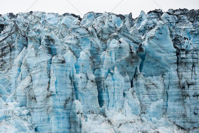 The Lamplugh Glacier in Glacier Bay National Park,  Alaska