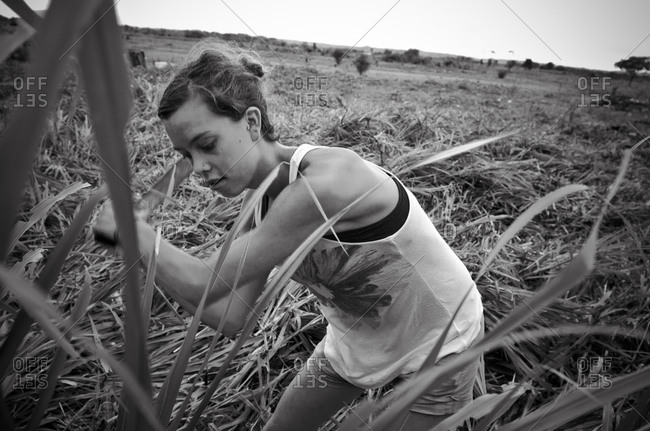 July 31, 2012: Young humanitarian woman cutting plants in Peruvian field