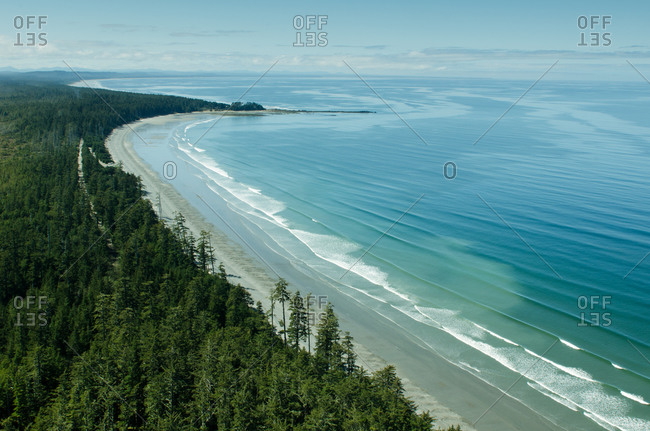 Wooded shoreline along British Columbia coast