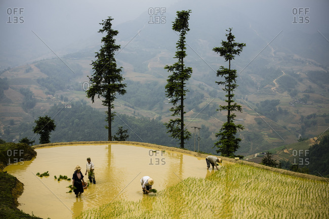 Ethnic minority farmers in the mountains