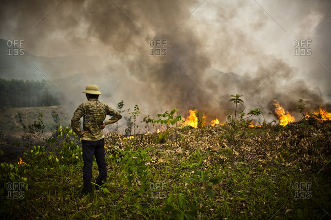 A man watches a field burn in Vietnam