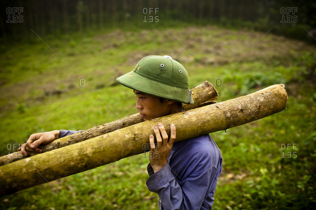 A young man carries felled tree trunks off to help clear land for new crops