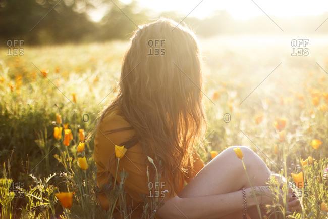 Woman sitting in sun dappled field of flowers