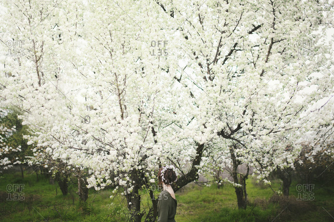 Hippie woman standing among tree blossoms
