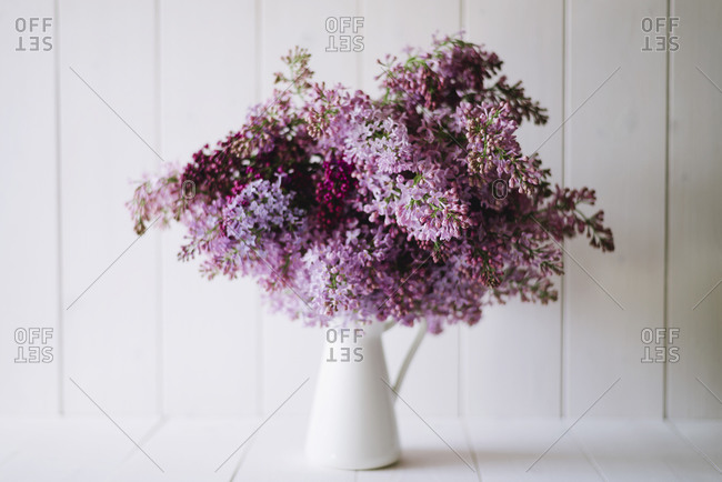 A bouquet of lilac flowers in a white pitcher
