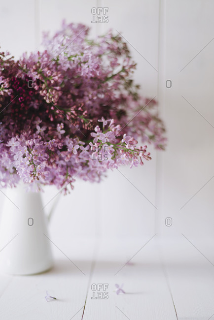 Freshly picked lilac flowers
