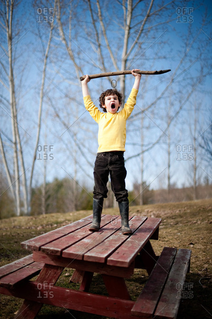 Young boy shouting on top of a picnic table