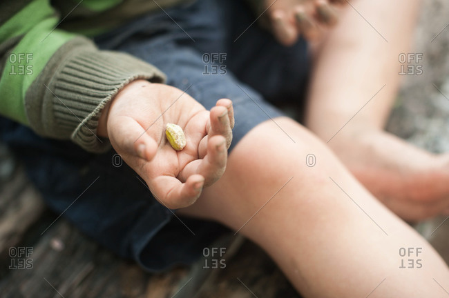 Boy holding a pistachio in his palm