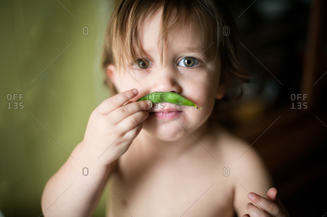 Little boy smelling a pea pod