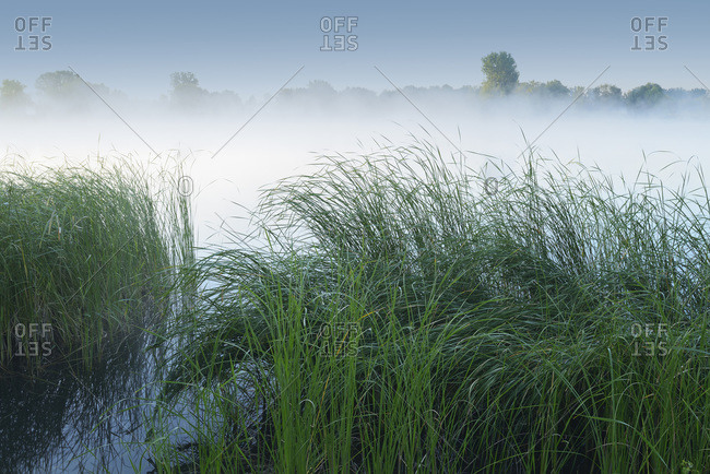 A lake in early morning fog in Hesse, Germany