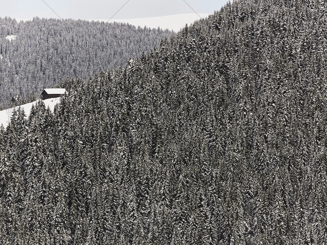 A cabin in a snowy forest near Megeve, French Alps, France